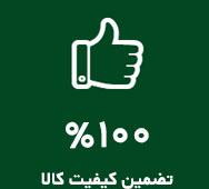 renovate_100-Green